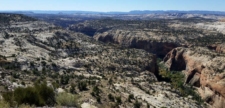 A view into Calf Creek Canyon along Highway 12 Scenic Byway