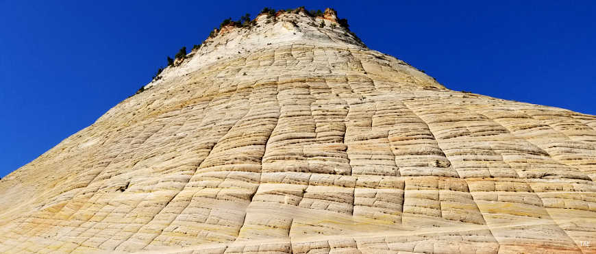 Checkerboard mesa, a pillar of cracked and banded colored sandstones rising just beside the byway