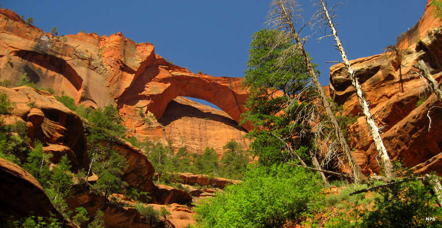 A view of Kolob Arch