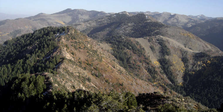 View in the Mount Olympus Wilderness
