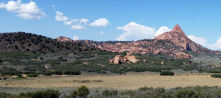 A view in Red Butte Wilderness