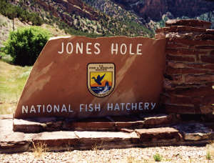 Entry sign at Jones Hole National Fish Hatchery
