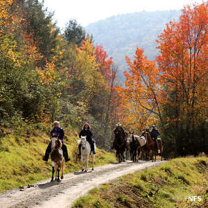 Horseback riders at Mount Rogers National Recreation Area