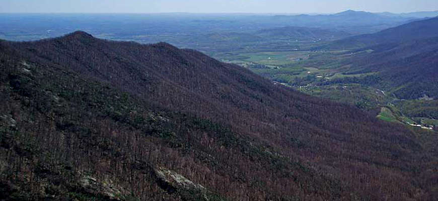 Looking across the hills and forest of Three Ridges Wilderness