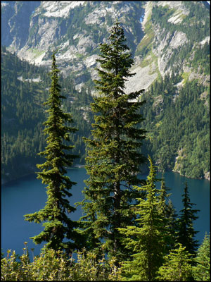 In the Thornton Lakes area of North Cascades National Park