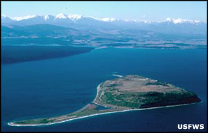 Aerial view of Protection Island National Wildlife Refuge
