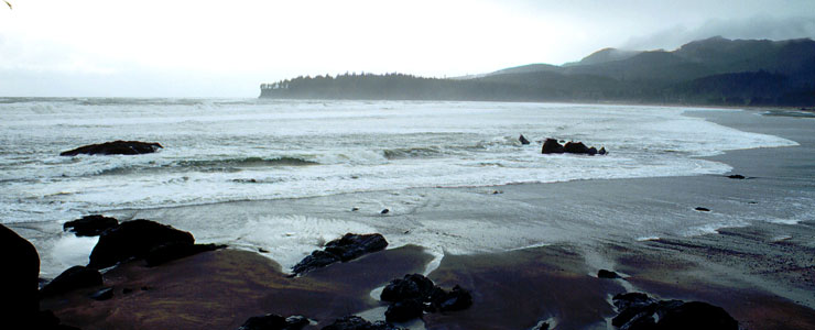 A beach along the Strait of Juan de Fuca Highway