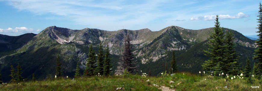 A ridge line in the Salmo-Priest Wilderness