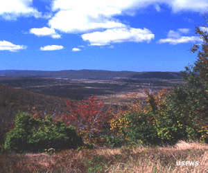 A view across Canaan Valley
