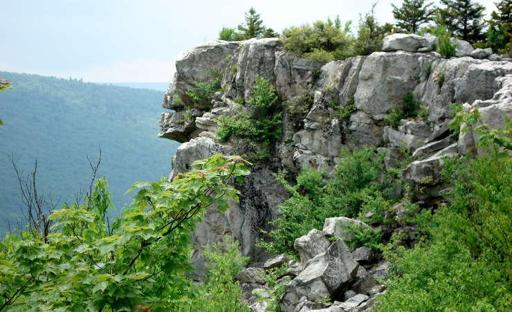Lions Head Rock at Dolly Sods Wilderness