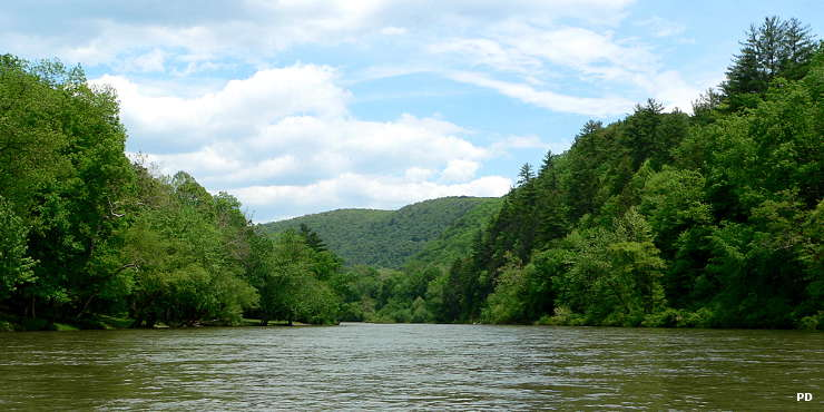 Along the Greenbrier River at the edge of Spice Run Wilderness