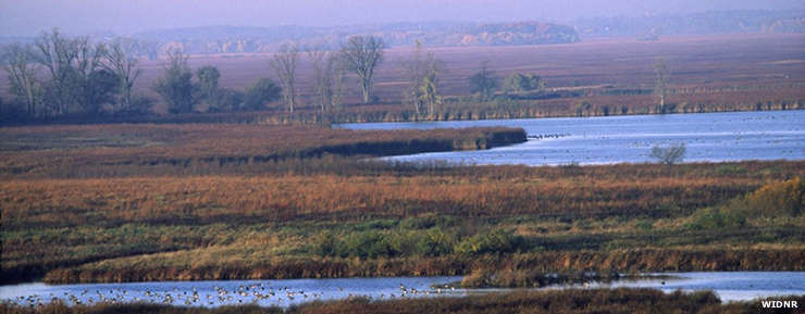 Horicon Marsh State Wildlife Area