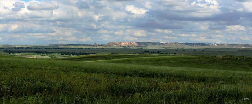A typical view on Thunder Basin National Grassland