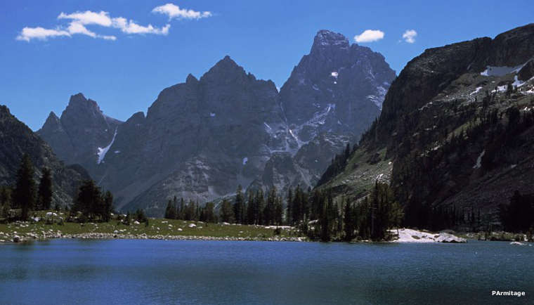 The Grand Tetons from Jedediah Smith Wilderness