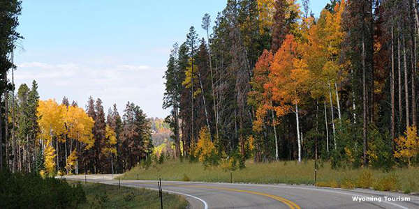 Fall along the Battle Pass Scenic Byway