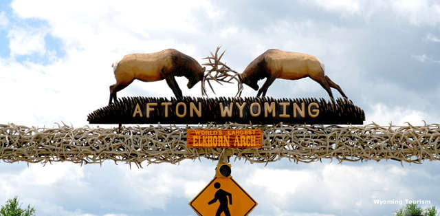 The Afton elk antler arch