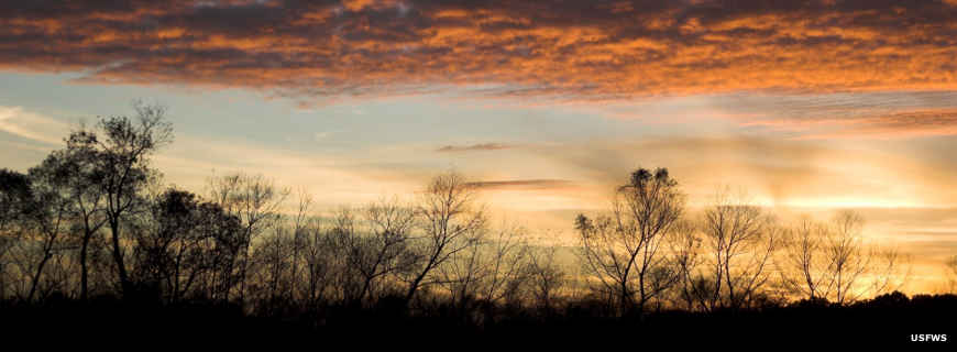 Sunrise in a cloudy winter sky at Eufaula National Wildlife Refuge