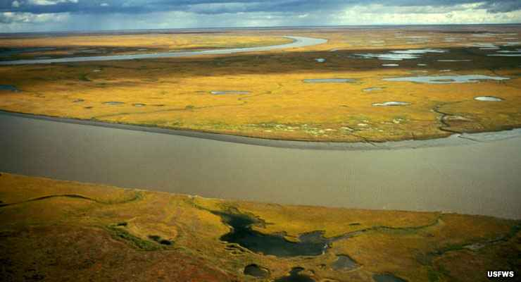 An aerial view of Yukon Delta National Wildlife Refuge