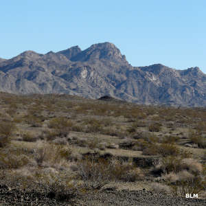 A mountain view in Chemehuevi Mountains Wilderness