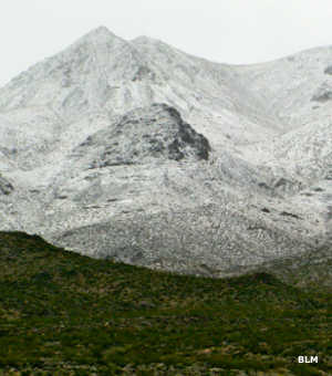Rare snowfall in the Clipper Mountains