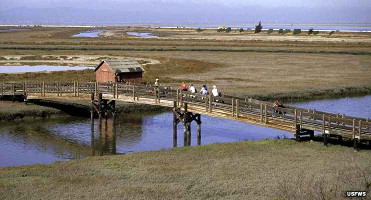One of the hiking/biking trails on Don Edwards San Francisco Bay National Wildlife Refuge