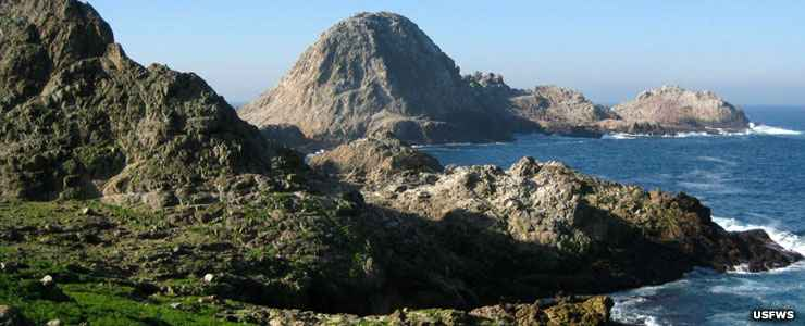 Farallon National Wildlife Refuge