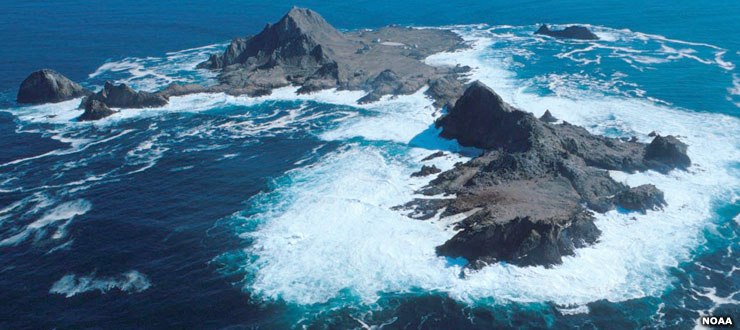 In the Farallon Islands