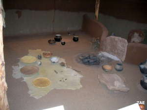 A view at the Anasazi Heritage Center