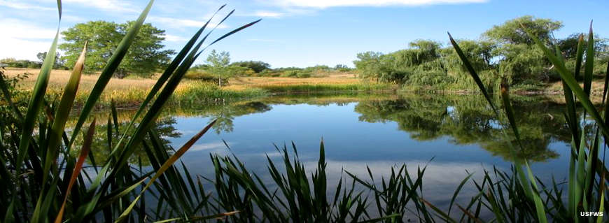 One of the ponds at Two Ponds National Wildlife Refuge