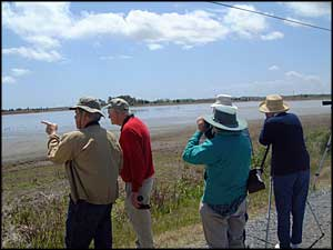 Birdwatchers at Prime Hook National Wildlife Refuge