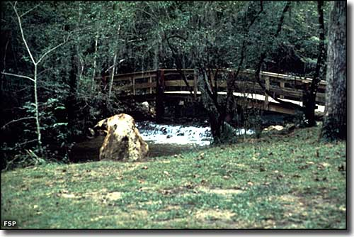 The spring flows under a footbridge at Ponce de Leon Springs State Park