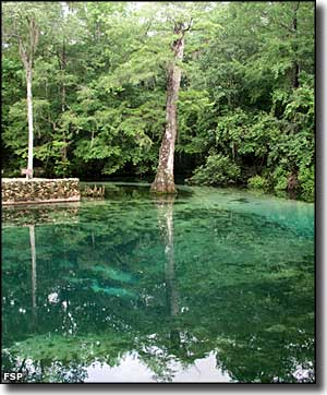 The spring basin at Ponce de Leon Springs State Park