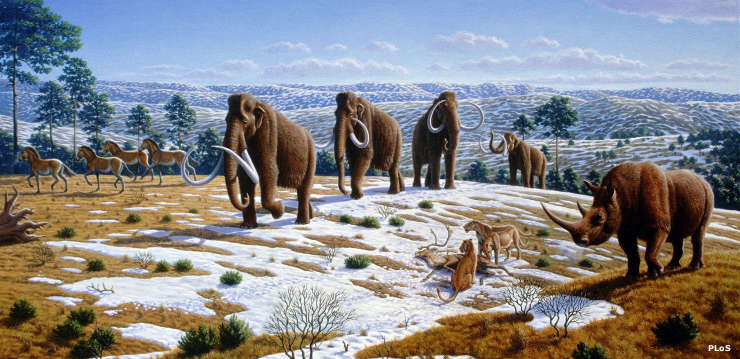 Mammals of the early Pleistocene Epoch