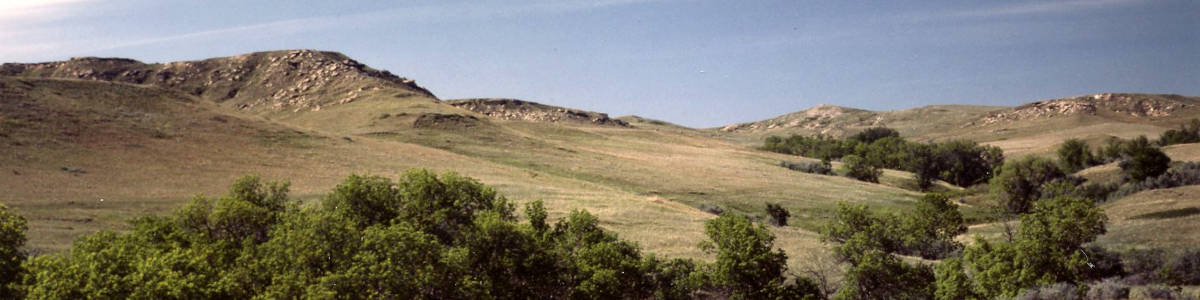 Hill and grass at the Cedar River National Grassland