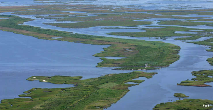 Aerial view of East Cove National Wildlife Refuge