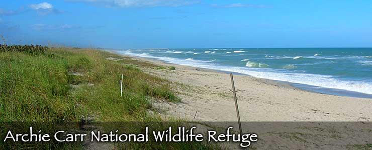 Archie Carr National Wildlife Refuge