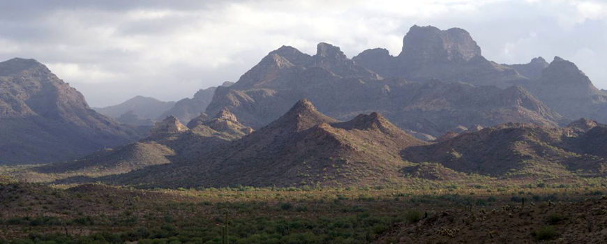 A view of the Bates Mountains in Organ Pipe Cactus National Monument