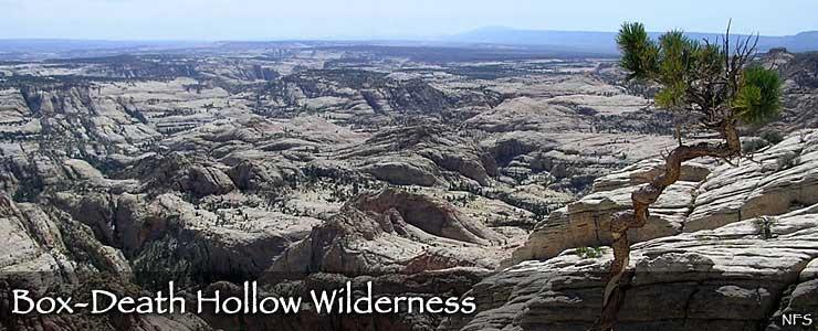 Box-Death Hollow Wilderness