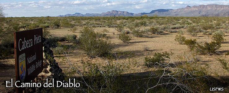 El Camino del Diablo Back Country Byway