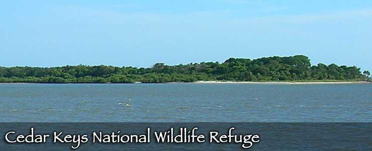 Cedar Keys National Wildlife Refuge