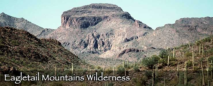 Eagletail Mountains Wilderness