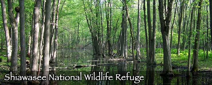 Shiawasee National Wildlife Refuge