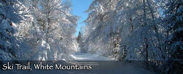 A ski trail in the White Mountains