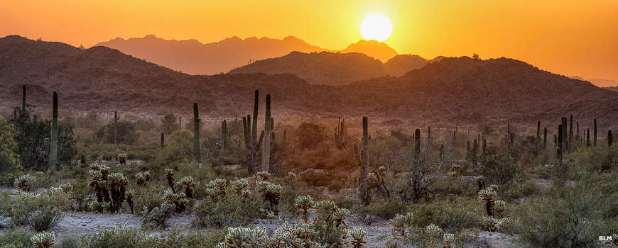 Watching the sunrise at Sonoran Desert National Monument