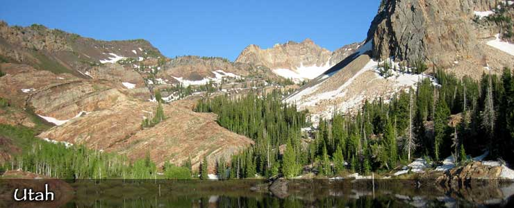 Uinta-Wasatch-Cache National Forest, Utah