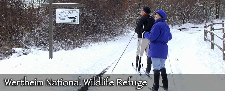 Wertheim National Wildlife Refuge