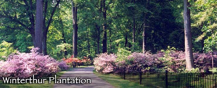 Winterthur Plantation in the Brandywine Valley