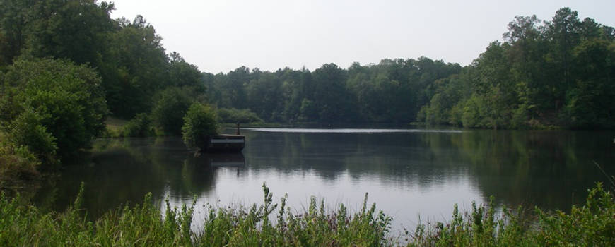 A lake view in Talladega National Forest