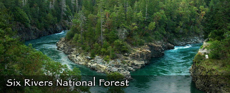 An aerial view of two rivers coming together in dense forest on Six Rivers National Forest