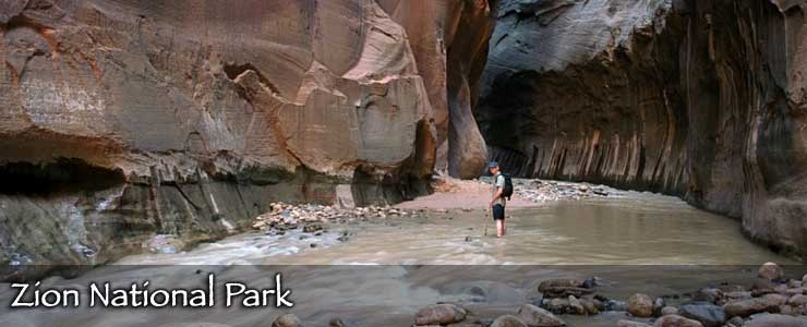 A hiker staning in the stream at the bottom of a slot canyon in Zion National Park